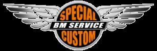 logo bm service special custom